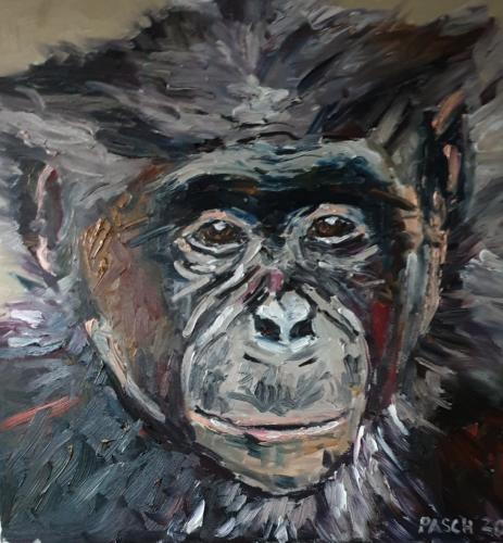 Schimpanse III