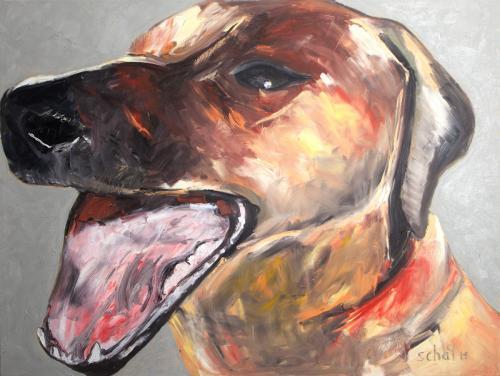 Hund Profil