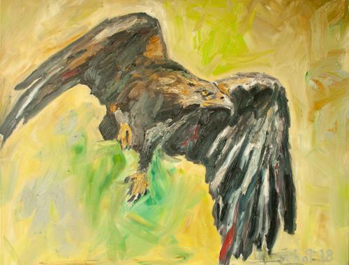 Adler VI